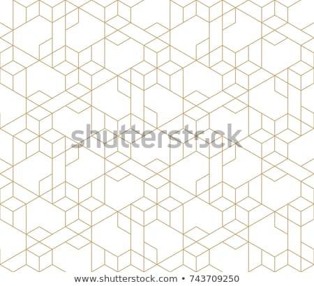 вектора многоугольник аннотация бесшовный геометрический треугольник Сток-фото © leedsn