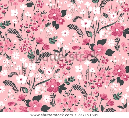 vector floral seamless pattern roses stock photo © trishamcmillan