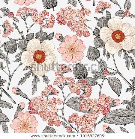 Vintage bloempatroon textuur achtergrond weefsel retro Stockfoto © SArts