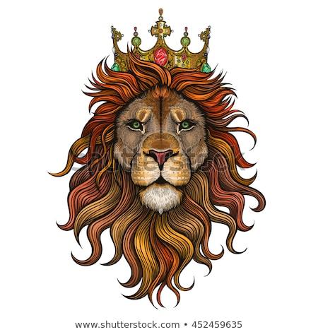 oroszlán · király · korona · vektor · felirat · illusztráció - stock fotó © krustovin