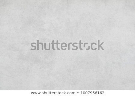 Light gray concrete Stock photo © homydesign