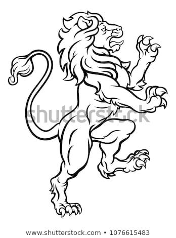 Lion Standing Rampant On Hind Legs Stock photo © Krisdog