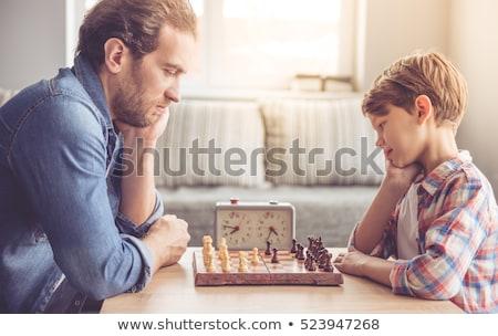 famille · jouer · échecs · maison · paysage · maison - photo stock © is2