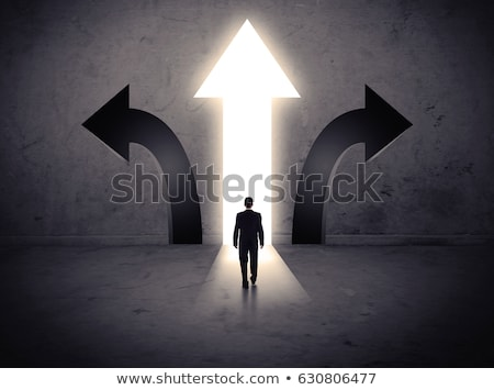 the right choice stock photo © psychoshadow