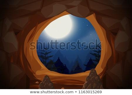 Cave entrance night scene Stock photo © bluering
