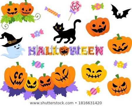 Gatos calabaza linternas bate halloween título Foto stock © TasiPas