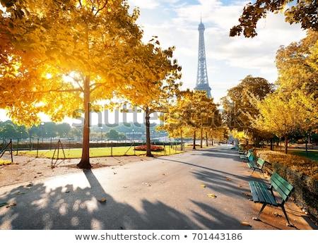 деревья парка Париж осень Эйфелева башня Франция Сток-фото © Givaga