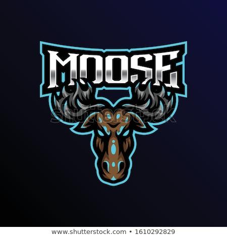 Cartoon Moose Baseball Stock photo © cthoman