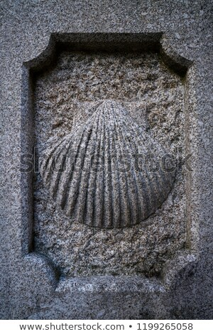 Santiago piedra Shell signo manera Foto stock © lunamarina