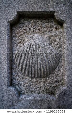 Santiago pietra shell segno modo santo Foto d'archivio © lunamarina
