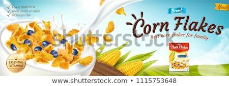 Blue bowl of corn flakes with milk splash Stock photo © Melnyk