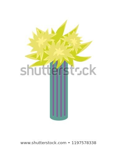 Fleur usine rayé vase isolé Photo stock © robuart