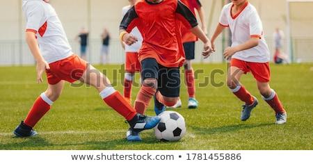 deux · football · joueurs · action · herbe · verte - photo stock © matimix