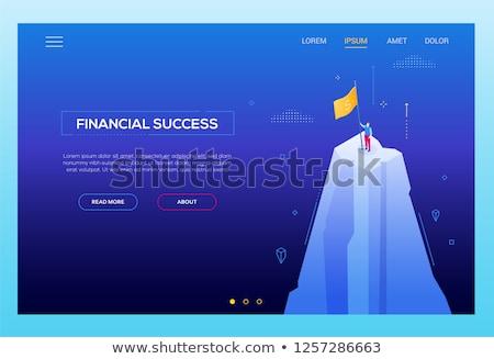 Finanziellen Erfolg modernen Vektor Website Stock foto © Decorwithme