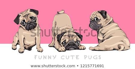 cute beige dog cartoon animal character Stock photo © izakowski