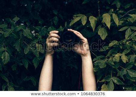 Paparazzi Photographer Spy in Bushes, Freelancer Stock photo © robuart