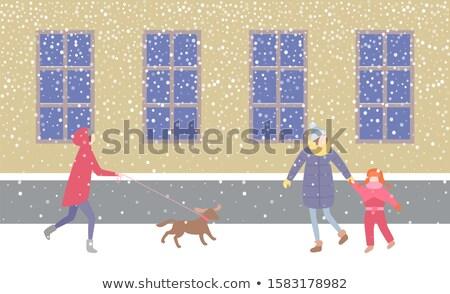 Lady Walking Dog on Leash Strolling Along Street Stockfoto © robuart