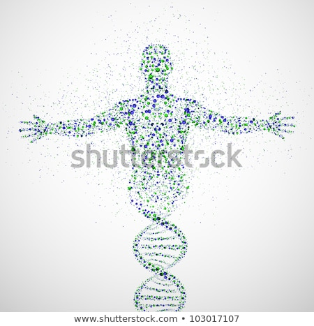 DNA, genetic symbol of man with dna molecule structure Stock photo © marish