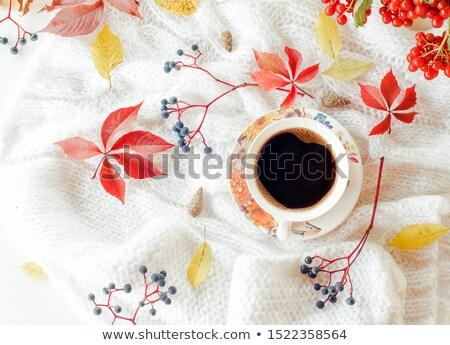 sonbahar · yaprakları · kahve · fincanı · ahşap · bo · doğa · arka · plan - stok fotoğraf © furmanphoto