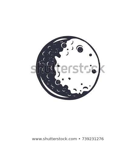 designed space full moon planet monochrome vector stock photo © pikepicture