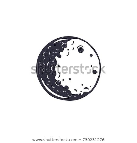 Przestrzeni pełnia księżyca planety monochromatyczny wektora astronomiczny Zdjęcia stock © pikepicture