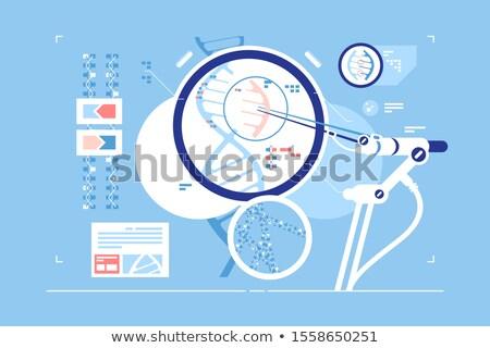 Gen correctie wetenschappelijk mogelijkheid laboratorium Stockfoto © jossdiim