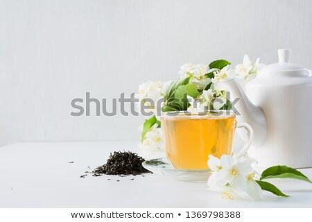Jázmin tea üveg csésze asztal levél Stock fotó © tycoon