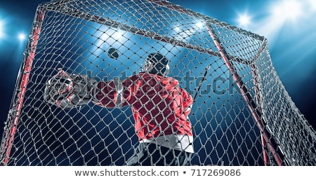 hockey goalie  Stock photo © mayboro
