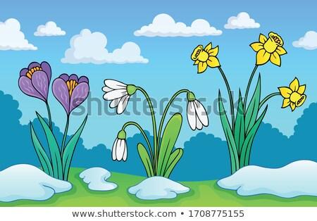 Cedo flores da primavera imagem flores nuvens primavera Foto stock © clairev