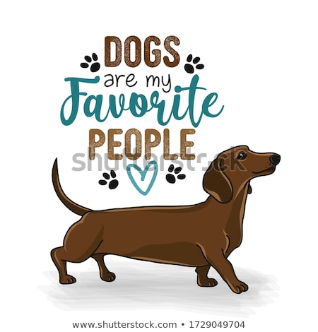 Dogs are my favorite people - Hand drawn positive phrase.  Stock photo © Zsuskaa
