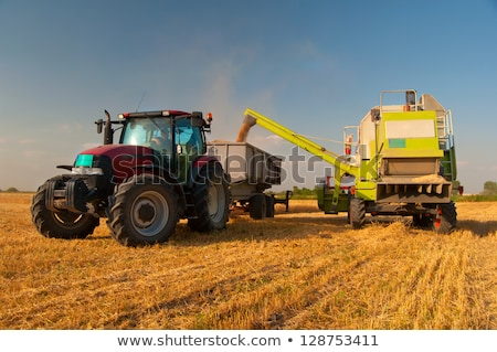 Big yellow agricultural truck Stock photo © Paha_L