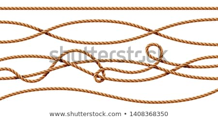 Curvy rope isolated Stock photo © klikk