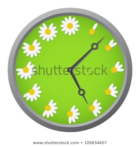 fiore · clock · prato · Seoul · fiori · tempo - foto d'archivio © dsmsoft