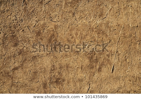 Full Frame Adobe Mud Wall, Rough Straw Texture Stock photo © Qingwa