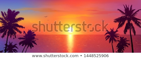 tropical palm on island in ocean with sunset stock photo © LoopAll