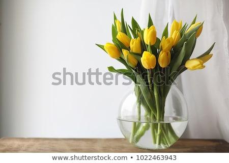 jarrón · tulipanes · vidrio · colorido · ramo · flores - foto stock © ivonnewierink