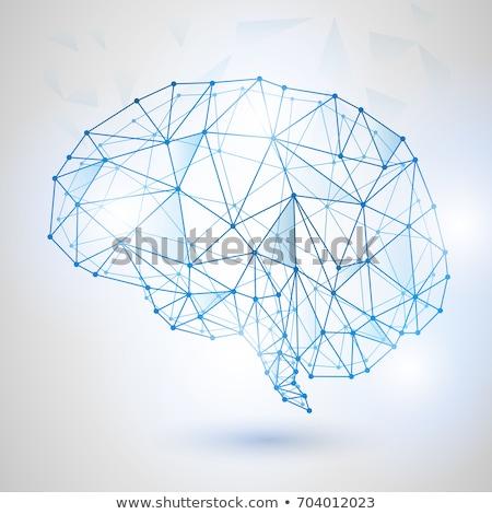 High Tech Brain Stock photo © idesign