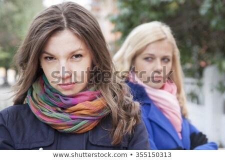 Dwa kobiet znajomych argument kobiet włosy Zdjęcia stock © photography33