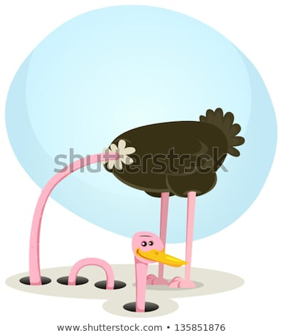 Ostrich Hiding And Looking From Hole Stock photo © benchart