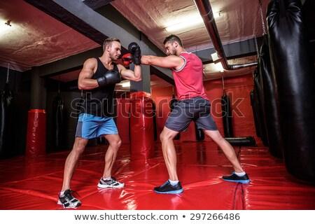 Zdjęcia stock: Young Shaped Man Boxing In Studio