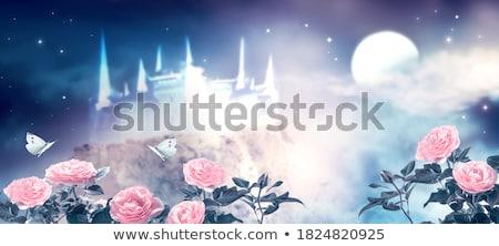 Kastély menny természet otthon háttér szépség Stock fotó © zzve