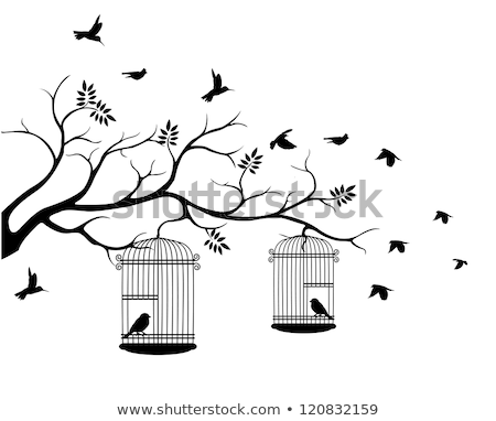 cute birdcages with birds Stock photo © beaubelle