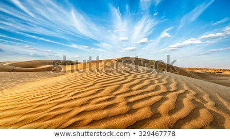 Panorama of dunes in Thar Desert, Rajasthan, India Stock photo © dmitry_rukhlenko