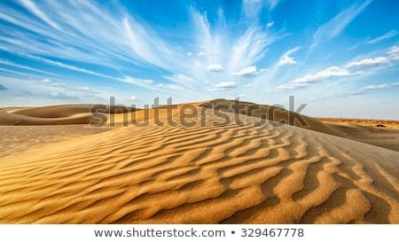 deserto · terra · secar · blue · sky · nuvens · sol - foto stock © dmitry_rukhlenko