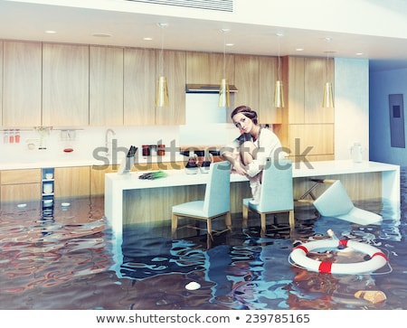 home and lifebuoy in water stock photo © cherezoff