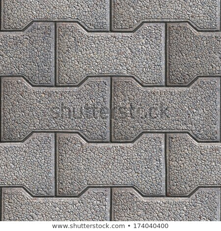 Figured Pavement. Seamless Tileable Texture. Stock photo © tashatuvango