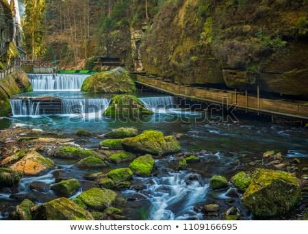 nehir · büyük · dere · orman · yeşil · çağlayan - stok fotoğraf © ondrej83