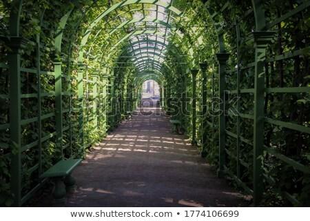palais · Russie · ciel · bâtiment · jardin - photo stock © sailorr