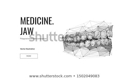 ストックフォト: 人間 · 顎 · クローズアップ · 図面 · 黒白 · 健康