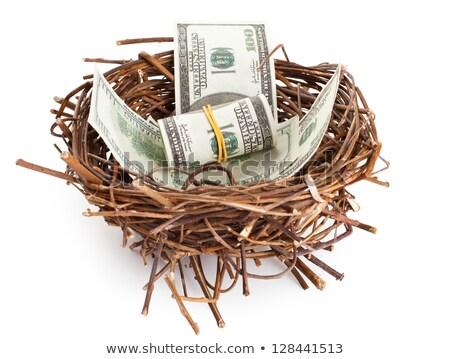 巣 卵 危機 金融 オーバル ストックフォト © Lightsource